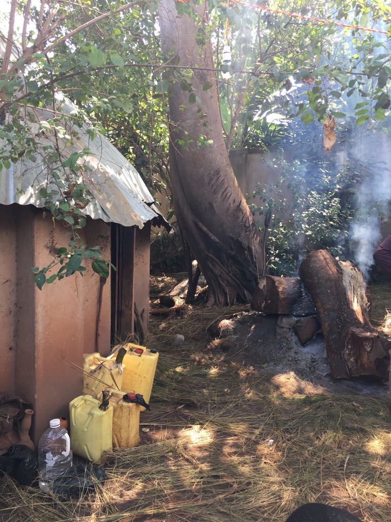 South Africa Great Native Traditional Healers