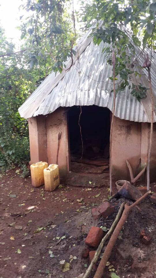 Uganda Native Healing, Traditional Healing